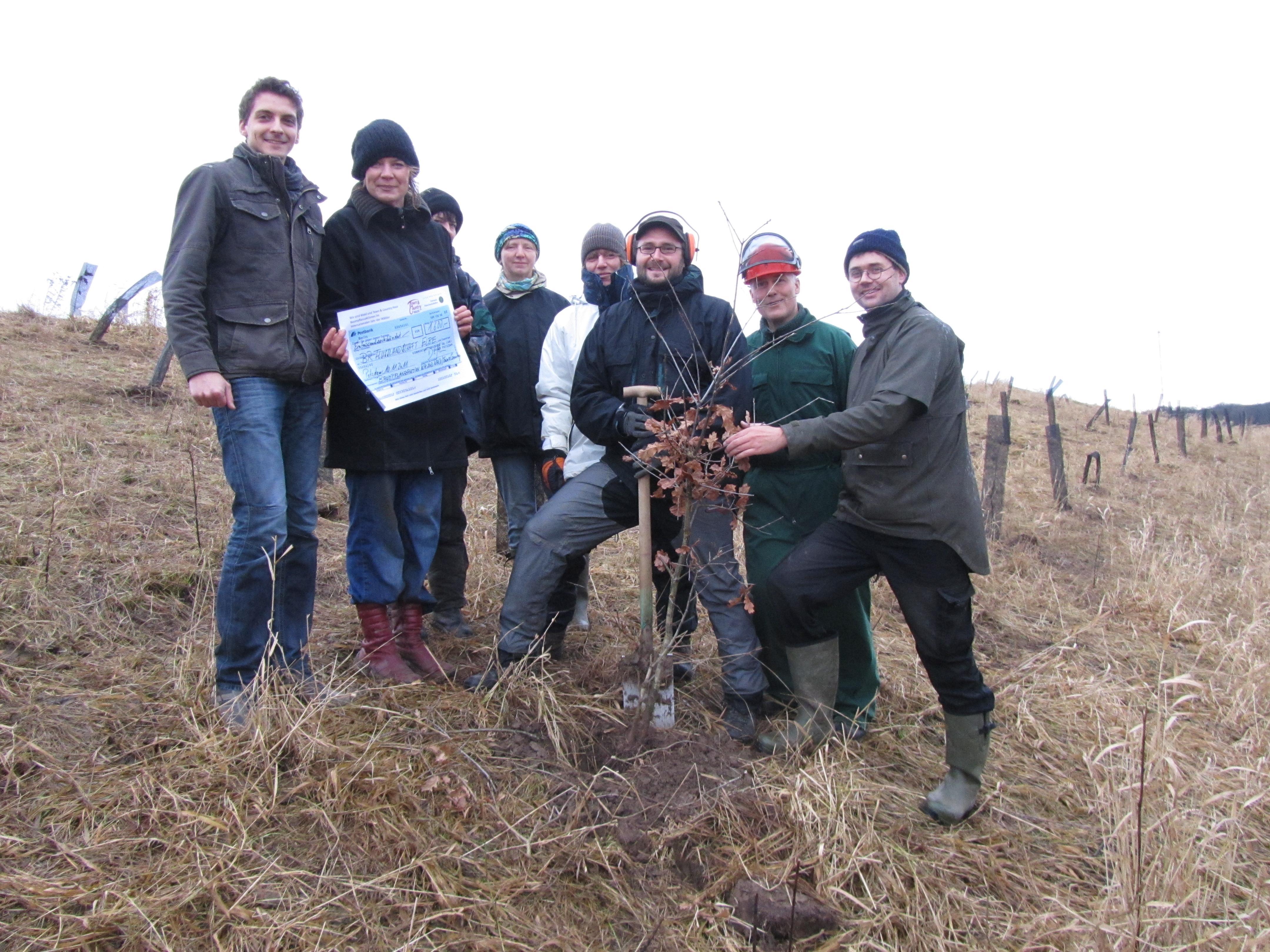 200 Jungeichen, die von Town & Country finanzierte, pflanzten die Mitarbeiter der Biosphärenreservatsverwaltung ein.